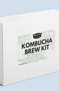 DIY kombucha starter kit